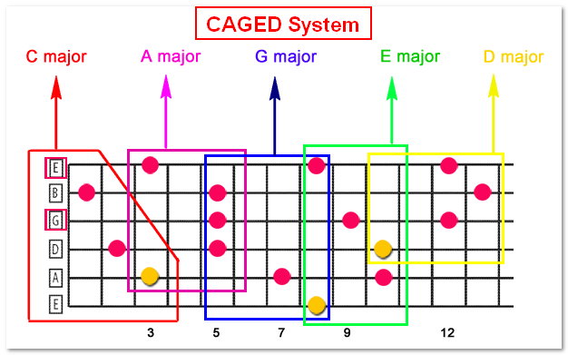 CAGED system